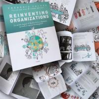 Nouveau Livre : Reinventing Organizations Illustré… En Français !